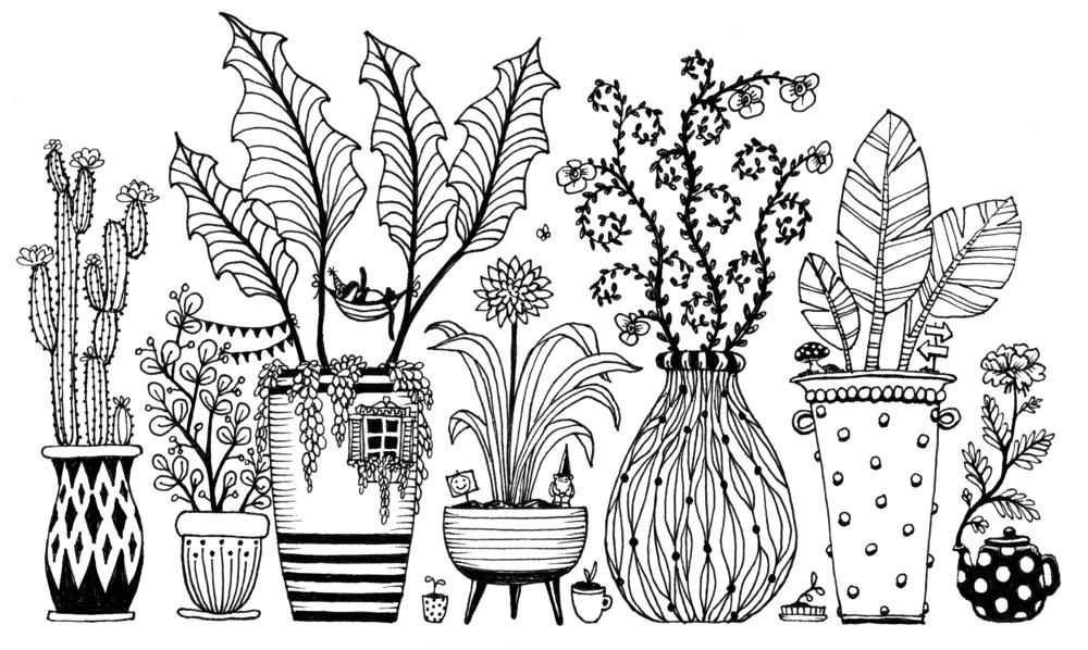 3_Plants.jpg