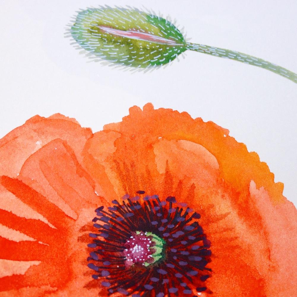 the making of a poppy pattern u2014 kirsten sevig