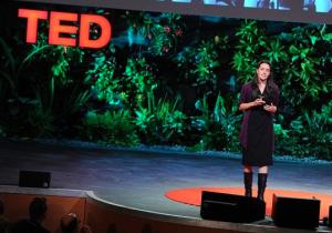 TEDGlobal 2011