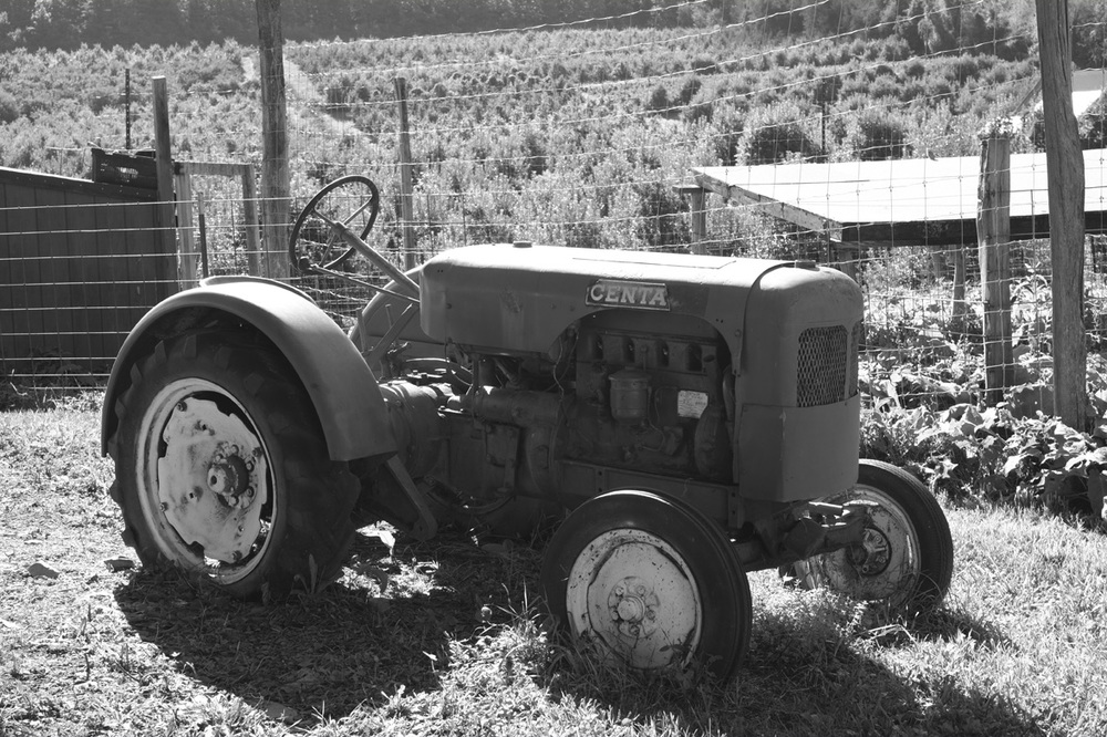 farmers05.jpg