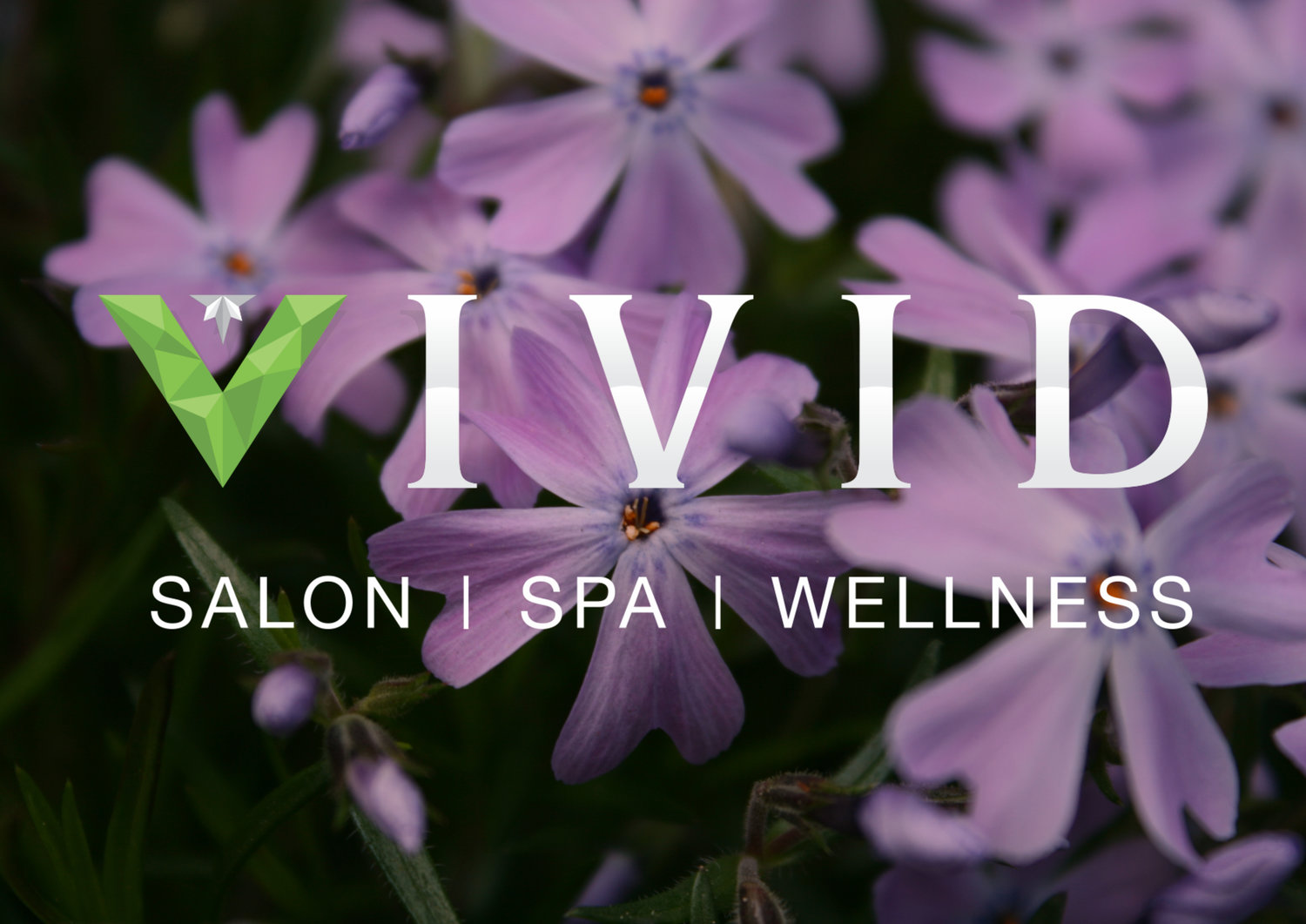 VIVID Salon|Spa|Wellness