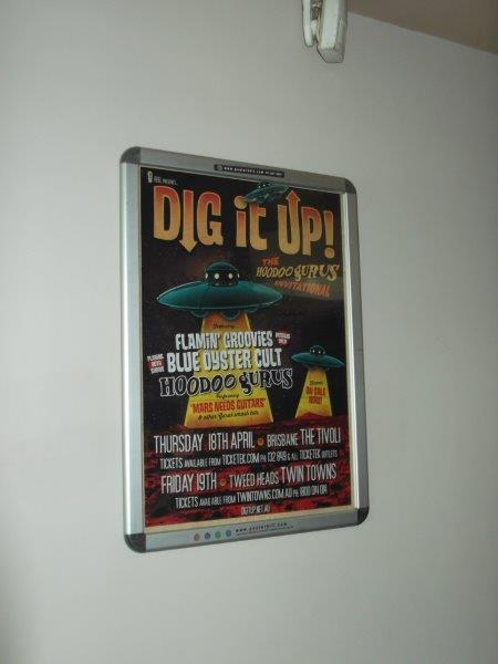 Dig it up festival.jpg