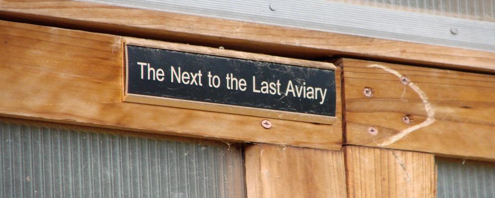 nexto_last_aviary.jpg