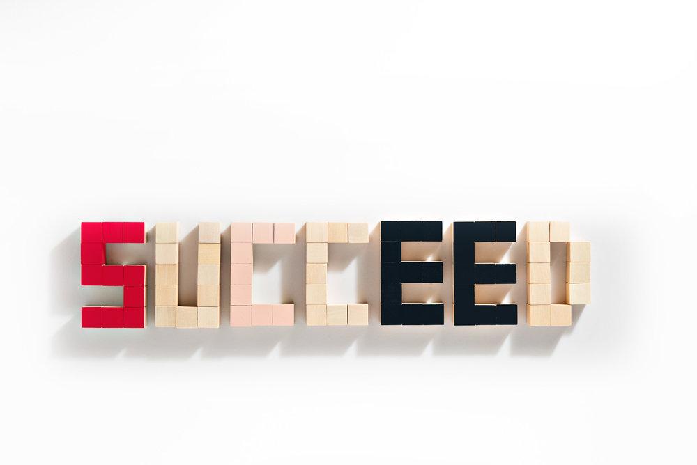 20140522_JLL_Words_Succeed_Capture0021_F2.jpg