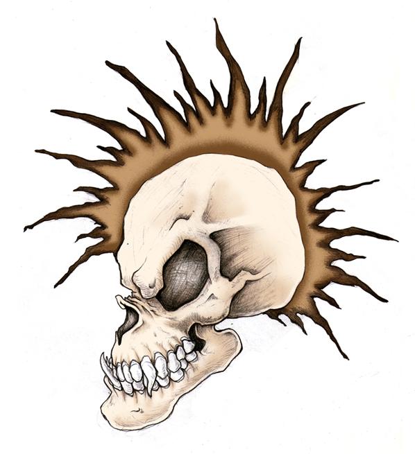 Skull_hawk_clr.jpg