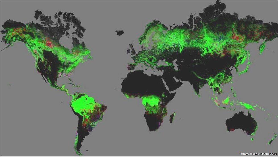 Map of current forest cover (green) and forest loss (red) and gain (blue) between 2000-2012.