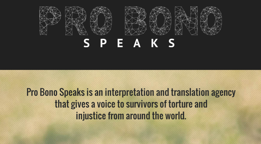 Pro Bono Speaks website banner.jpg