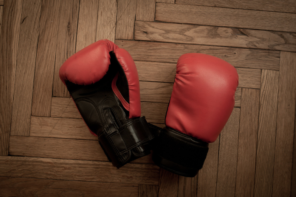 Tigran's boxing gloves.