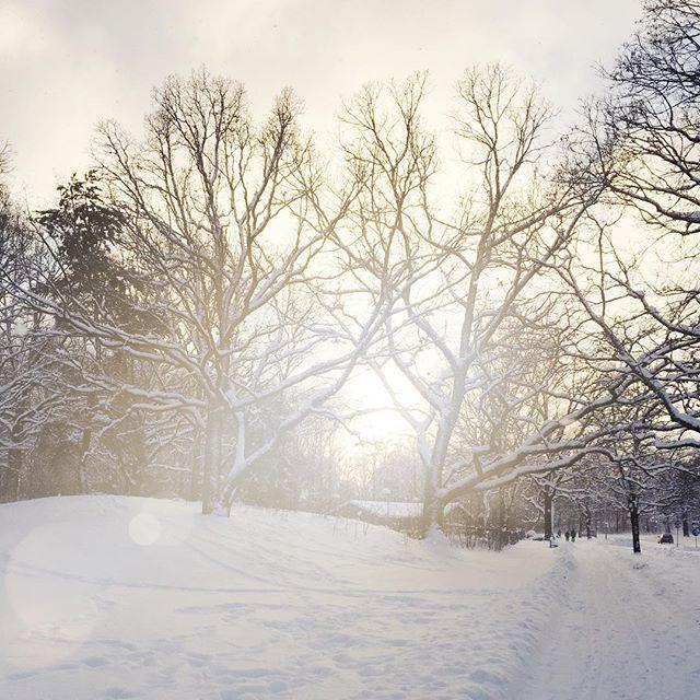 Halleluja för snö! ❄️☃️✨