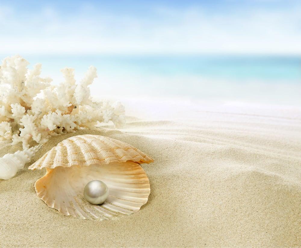 Pearl-fisher-496.jpg