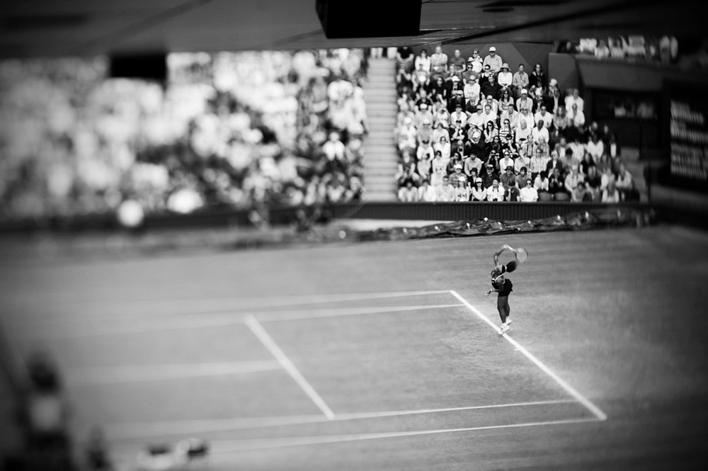 Serena Williams at Wimbledon - London 2012 © David Burnett