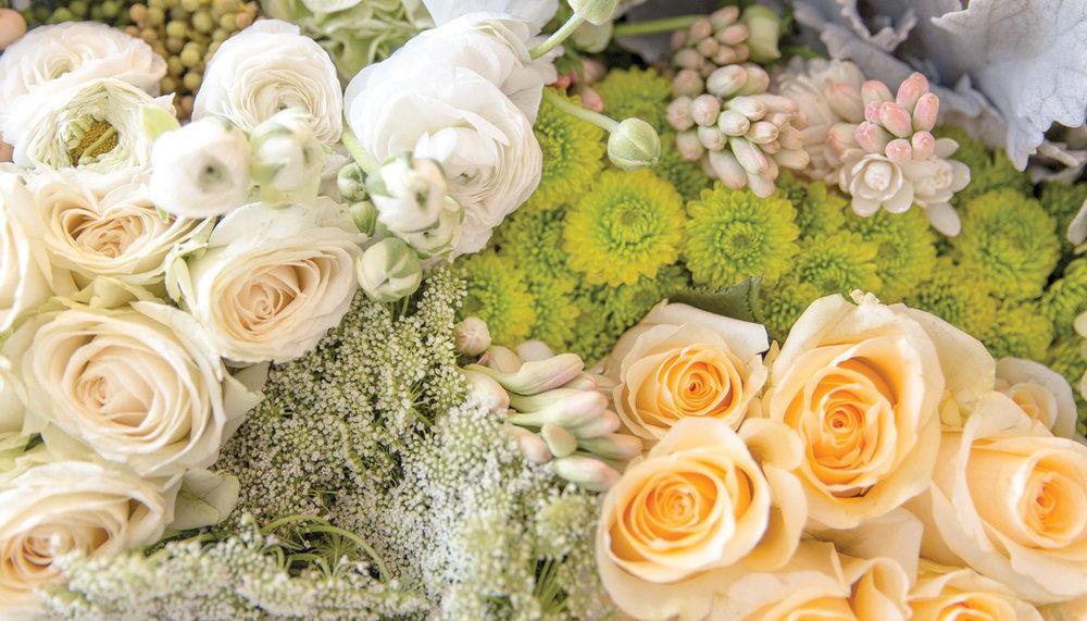 Florista_FlowerShot4.jpg