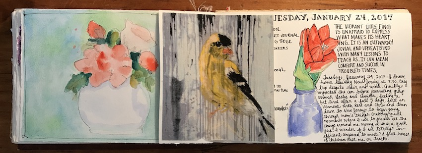 Recent Journal Pages