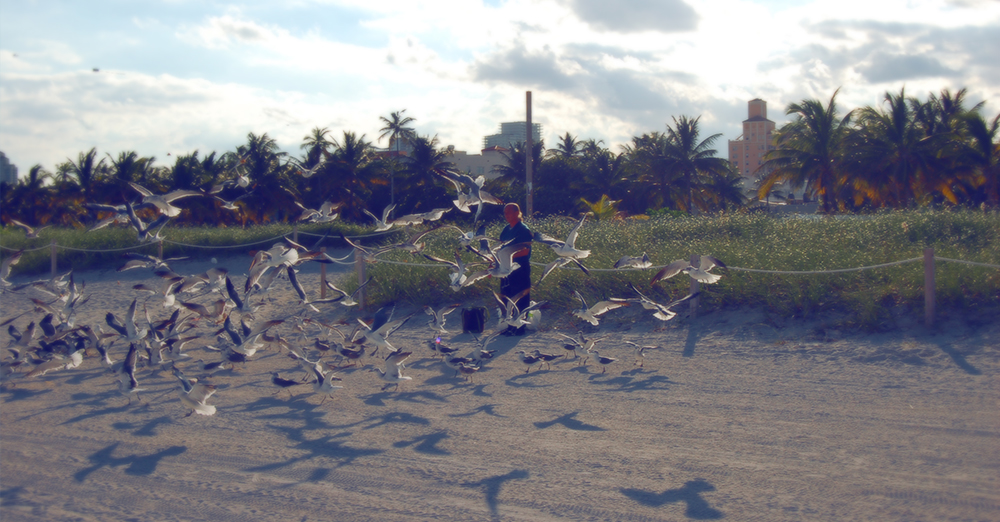 MOTLEY_MIAMI_birdman.jpg