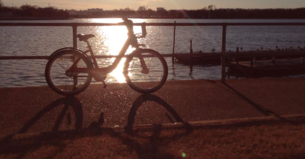 MOTLEY_bike.jpg