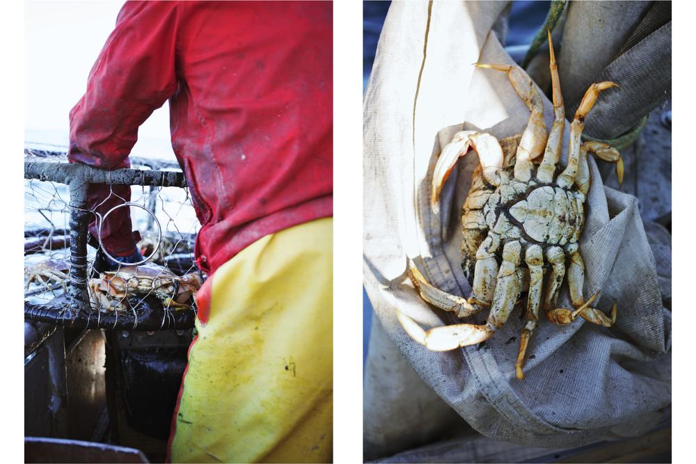 Crabbing10.jpg