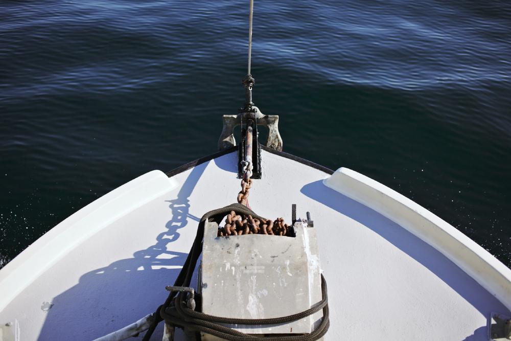Crabbing11.jpg