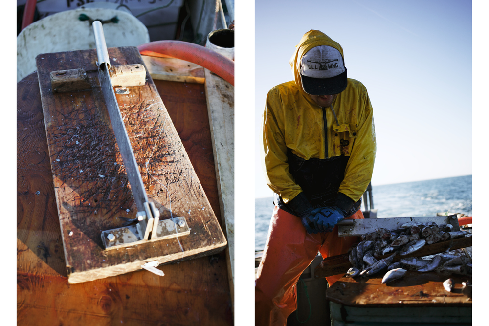 Crabbing15.jpg