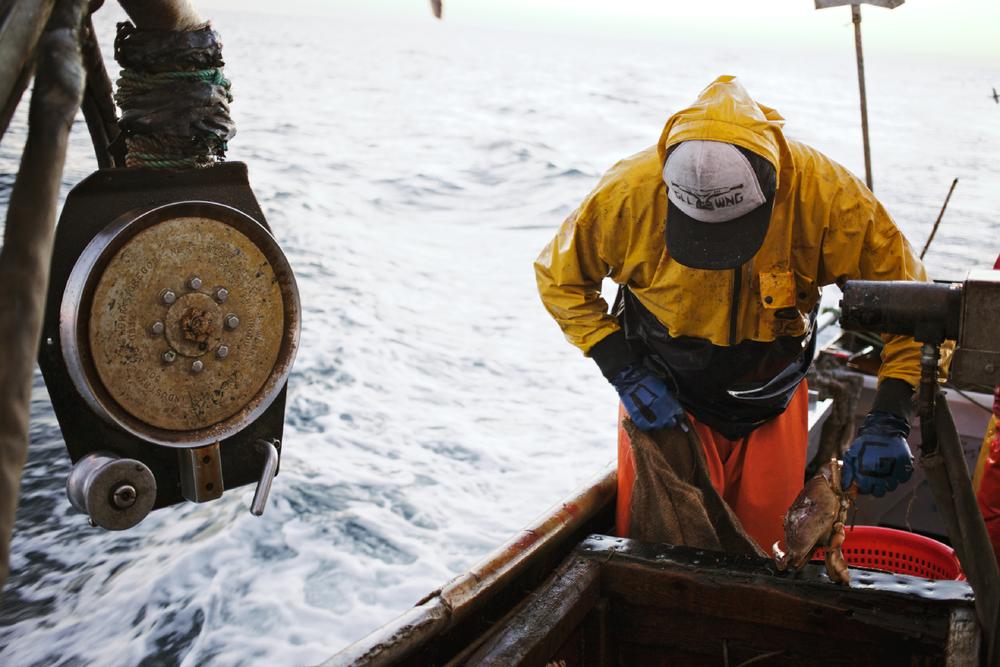 Crabbing18.jpg