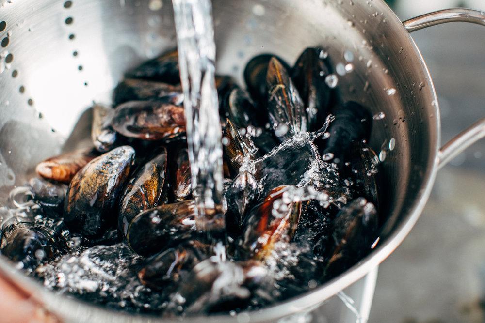 Mussels-1.jpg