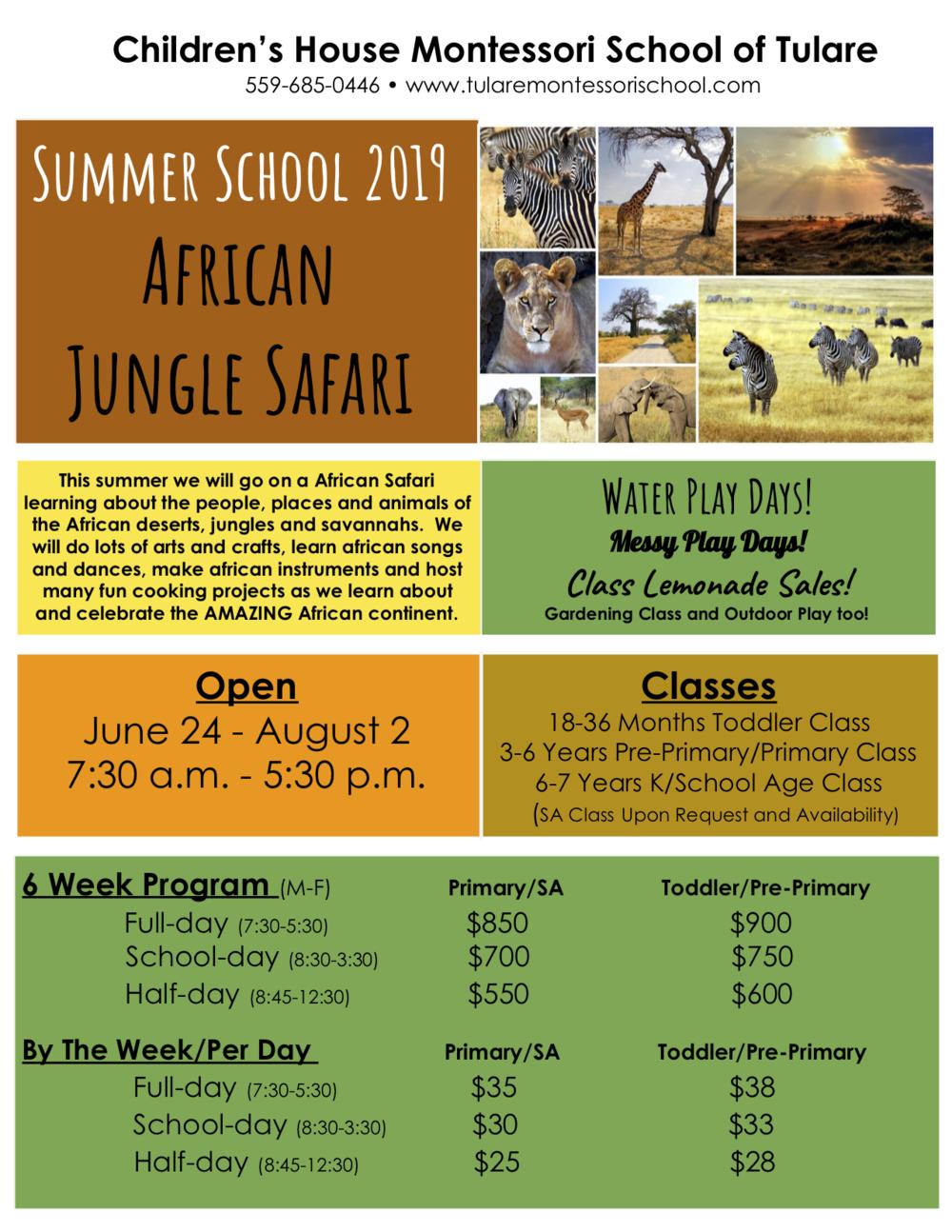 Summer School Flyer 2019.png