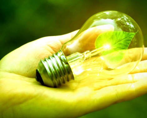 Go Green With Kopa Group Lighting.