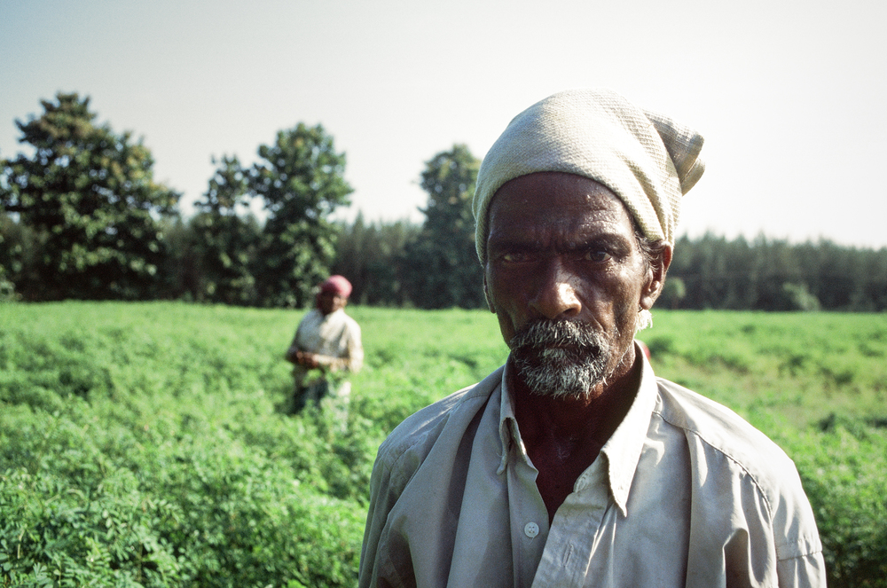 Indigo Farmer // Puducherry, India // 35mm Film // 2011