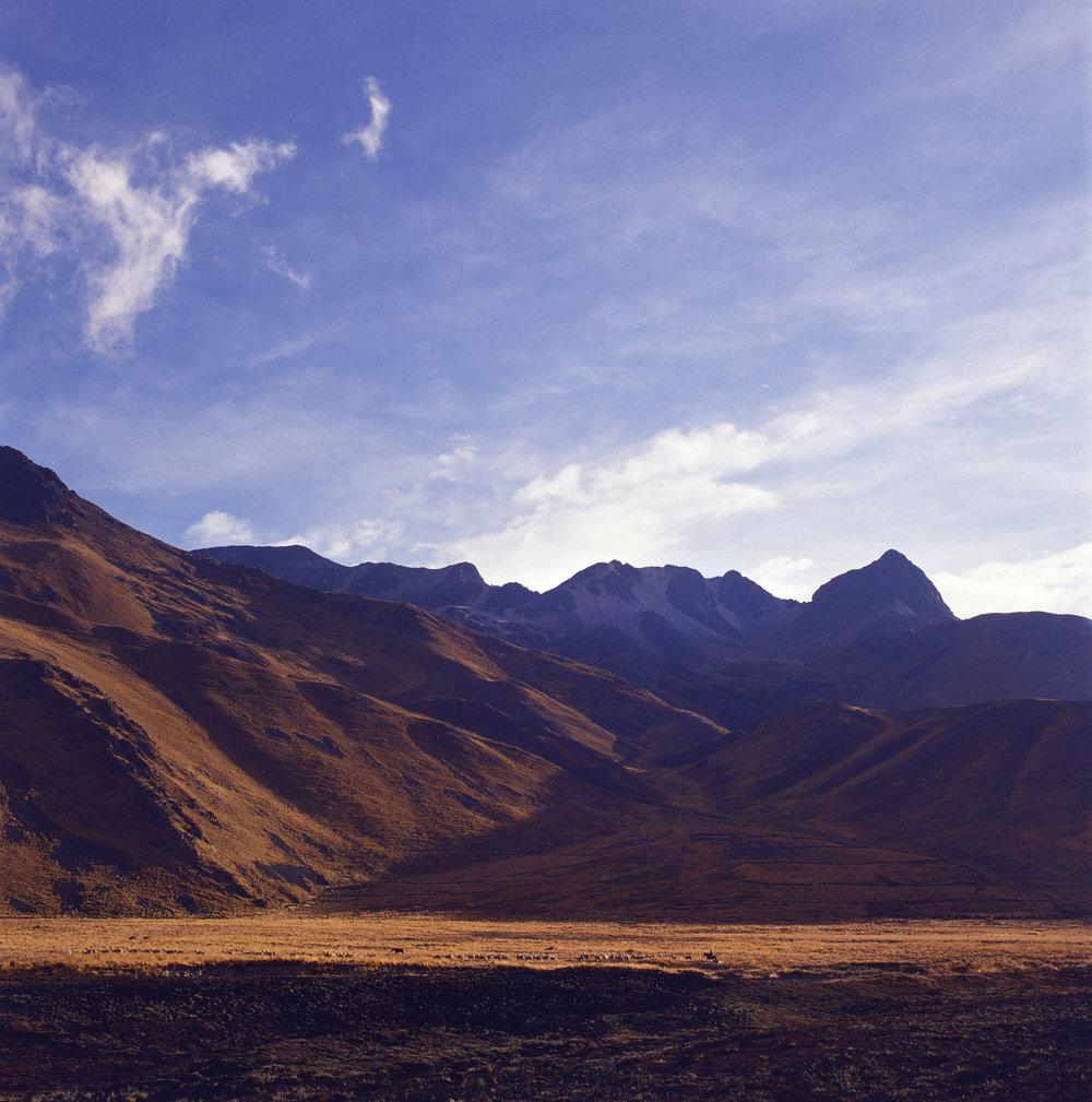 Gauchos Herding Llamas // Cordillera de los Andes, Peru // 120mm Film // 2013