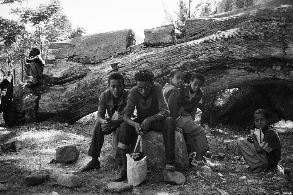 Schoolboys // Wikro, Ethiopia // 2011 // 35mm Film