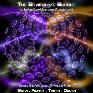 Brainwave+Bundle+512.jpg