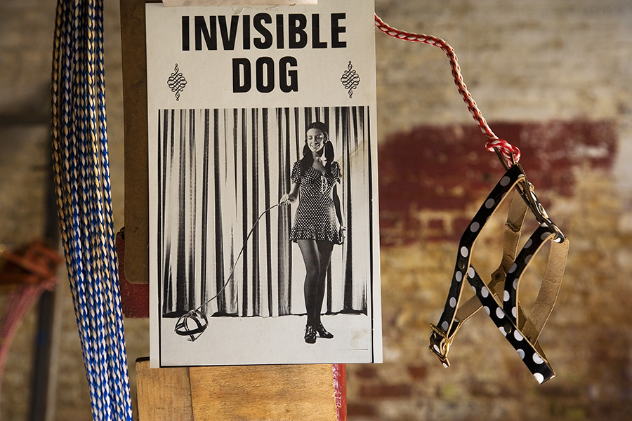 The Invisible Dog by Martine Fougeron