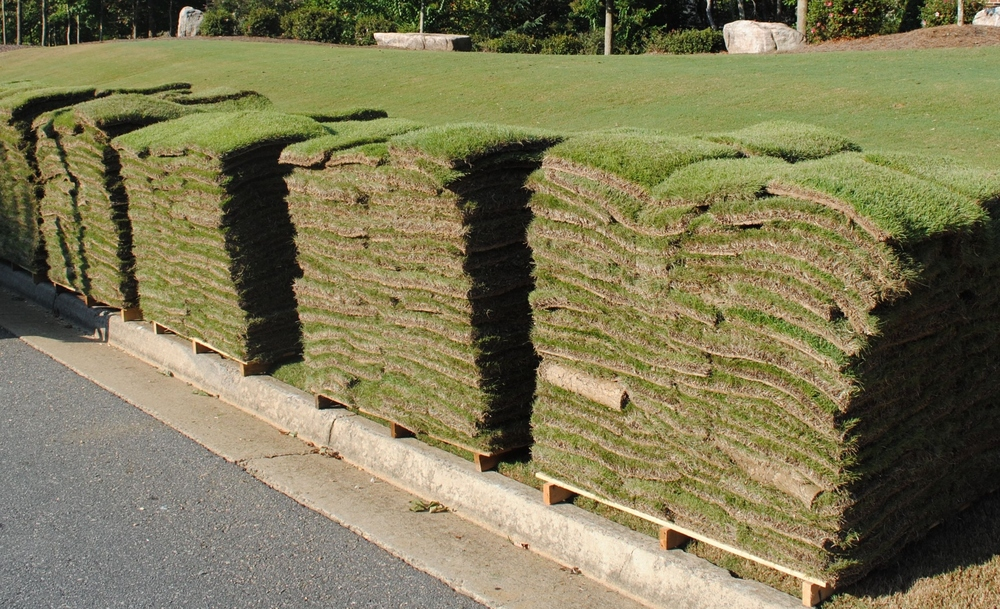 emerald-zoysia-sod-delivery-prices%5B1%5D[1].jpg