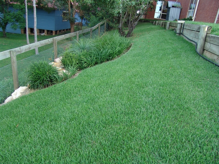 Sodding landscaping green image services empire zoysia sod farm5b15d1g workwithnaturefo