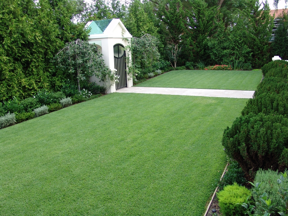 Empire-Zoysia-Sod-Prices%5B1%5D[1].jpg