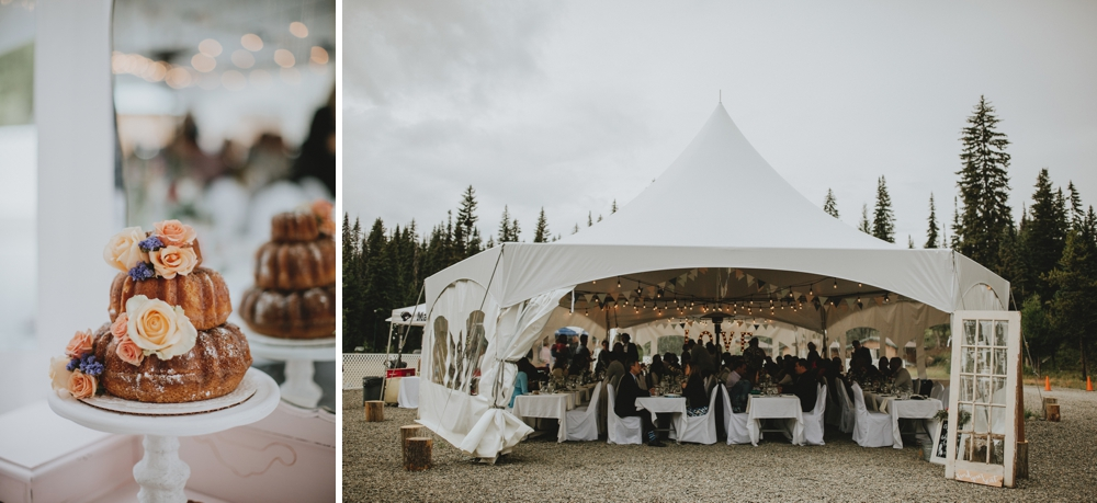 Danaea-Li-Photography-manning-park-wedding_0039.jpg