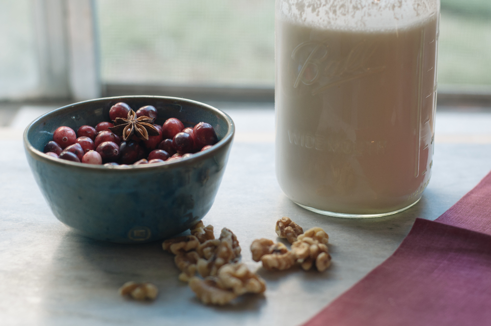 Freeandnativejournal__Holiday_Cranberry_Smoothie 1a.jpg