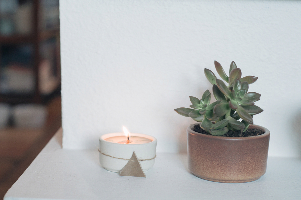 Freeandnativejournal__The_Chalkboard_DIY_Beeswax_ Holiday_Candle_4a.jpg