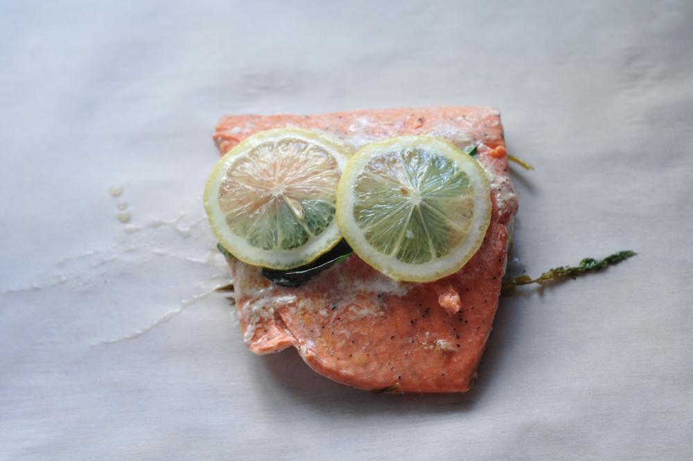 Freeandnative_NATIVE_salmon_3.jpg