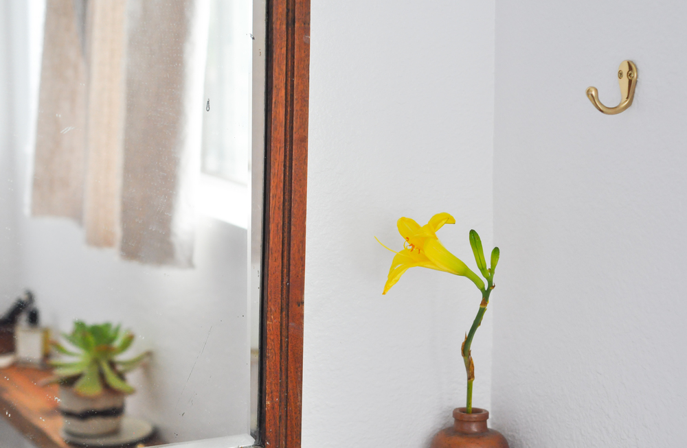 free-and-native-flower-mirror-corner