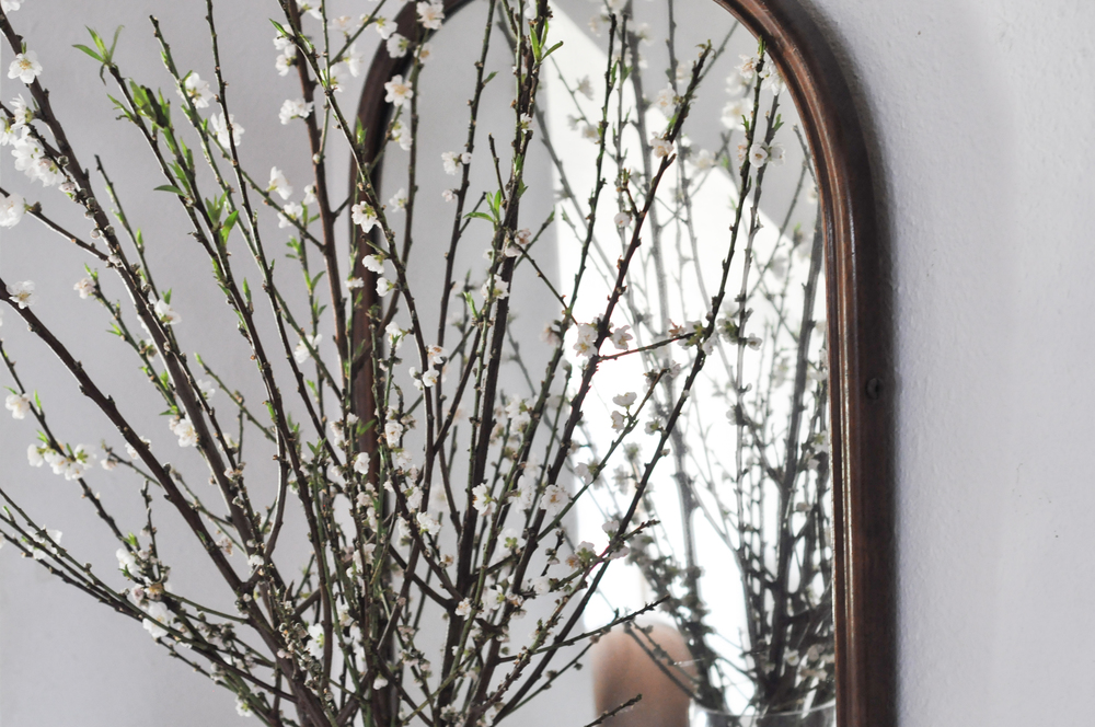 free-and-native-branch-flowers-mirror