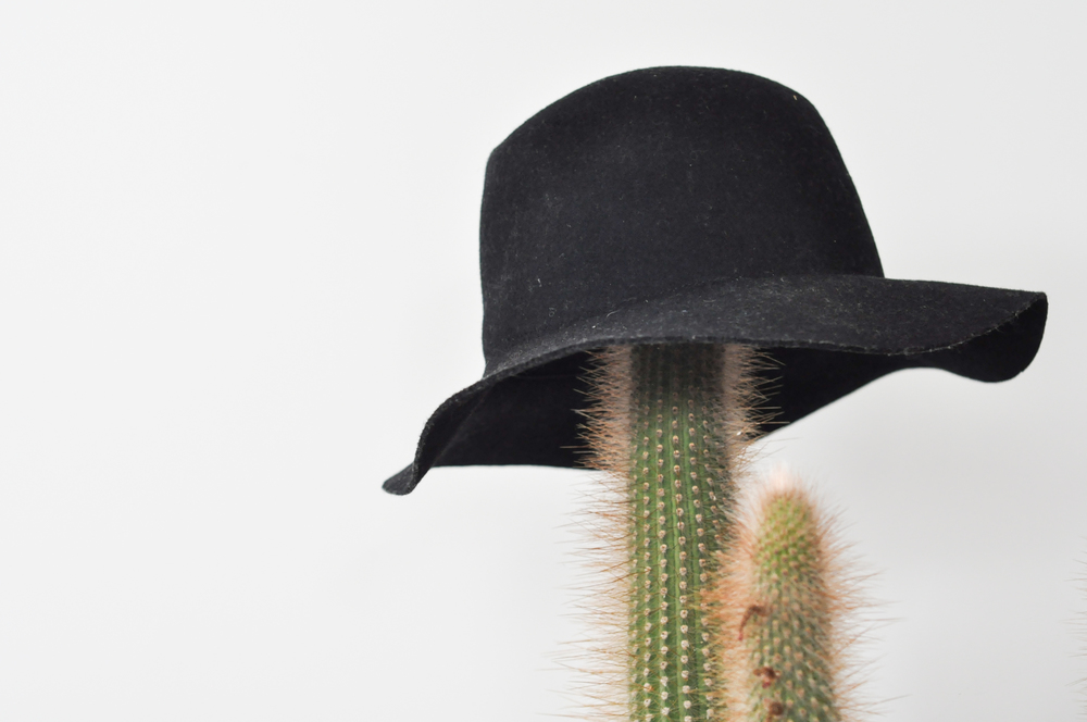 to-be-magnetic-hat-cactus