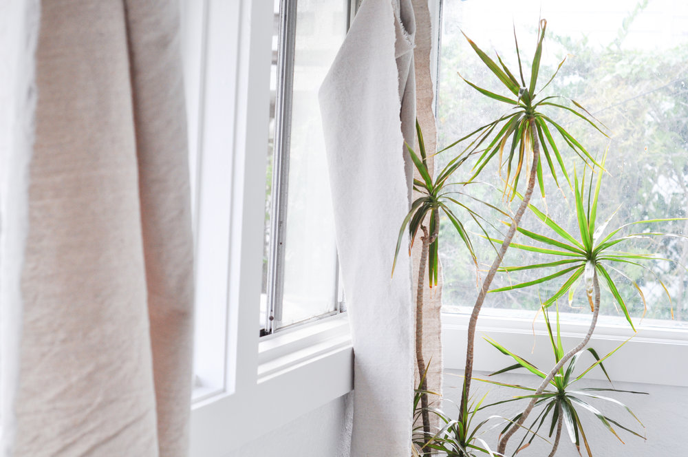 Free-and-native_Airbathing-tree-window-curtain
