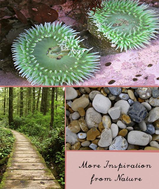 naturepart2.jpg