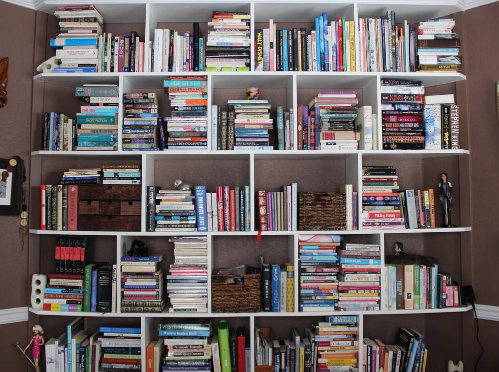 bookshelves in the studio