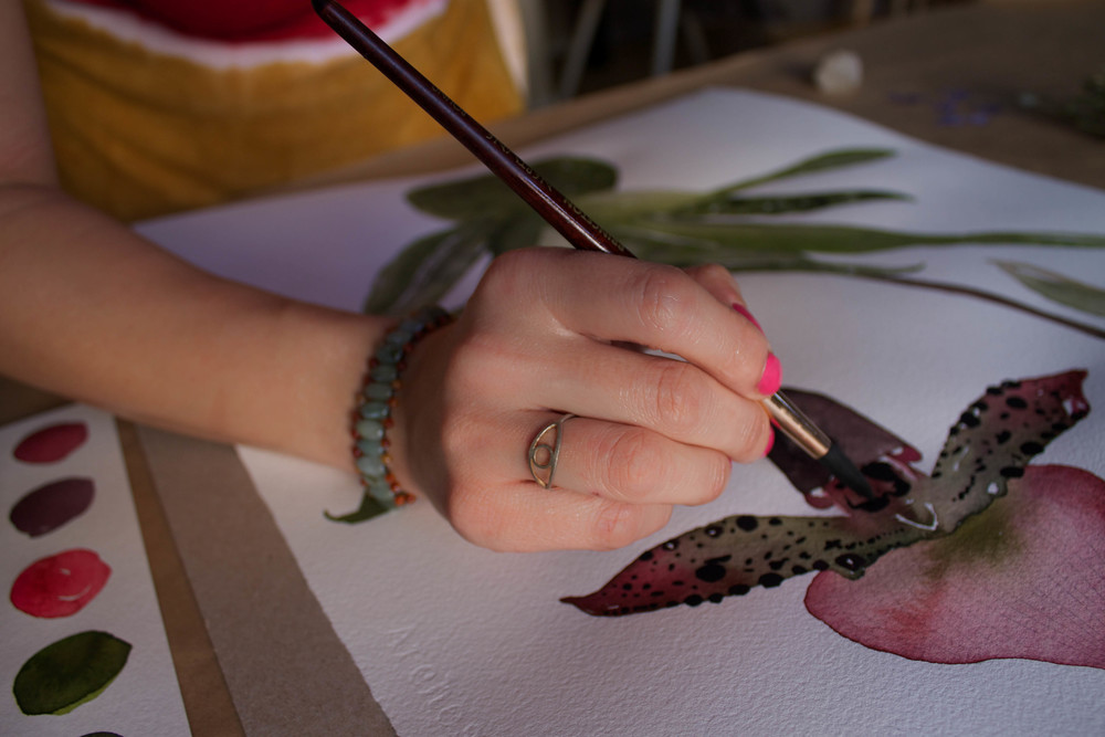 A  painting  of a lady slipper in process.