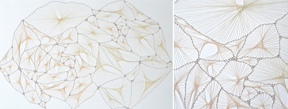 Sallow, Cotton Thread on Bristol, 19 x 12 inches, 2012