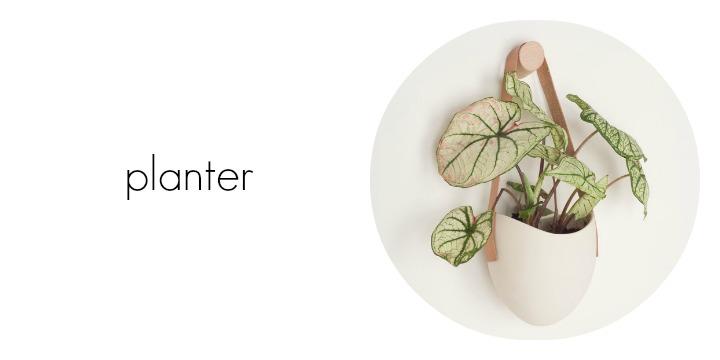 planter.final.jpg