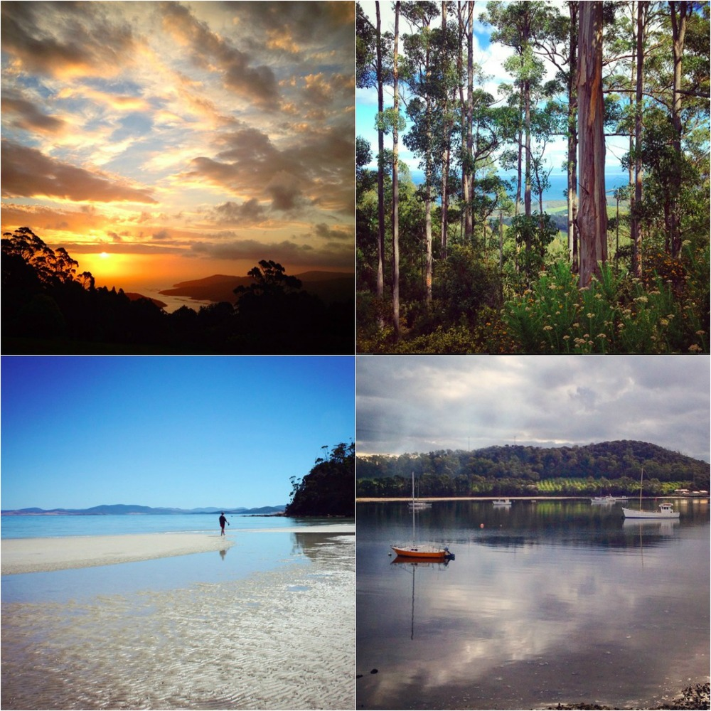 a sampling of images from instagram (@gladdish) of Tasmania