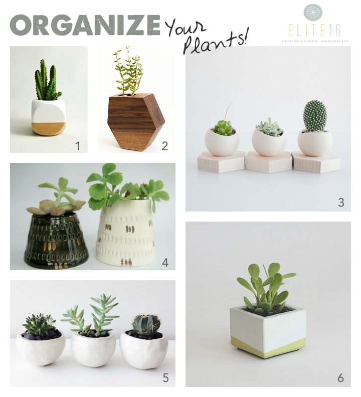 1.   Geometric Succulent Cactus Planter  by sea and asters   2.   Wood Succulent Plant Holder  by few bits   3.   Hex Spora  by light and ladder   4.   Modern Ceramic Planter with Gold  by bininaor   5.   White Planter Balls, set of 3  by seasons for you   6.   Mini Concrete Planter  by nystrom goods
