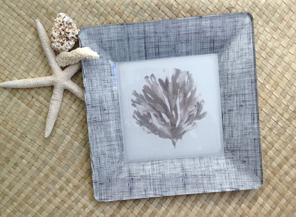 seaweed plate in gray